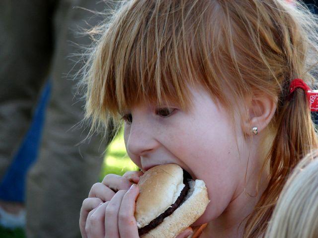 ummm-hamburger (48k image)
